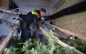 Meerdere Arnhemmers aangehouden na vondst drugs en vuurwapens