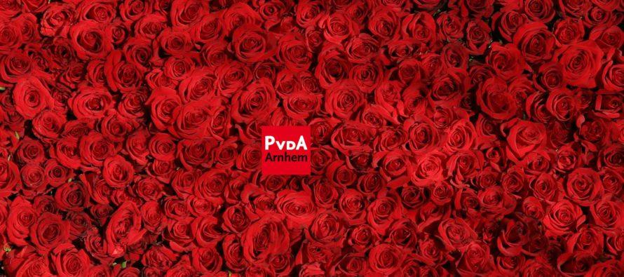 PvdA organiseert workshops over lokale politiek