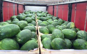 Supermarkt in Arnhem stunt met 28.000 kilo aan watermeloenen
