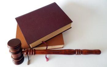 Advocaat Celik krijgt er een nieuwe collega bij