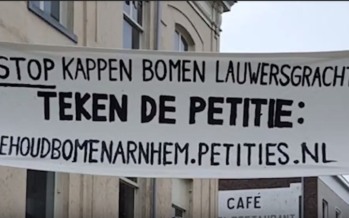 Bewoners woedend op gemeente vanwege kap gezonde bomen aan Lauwersgracht