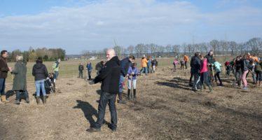 Arnhem steekt handen uit mouwen tijdens Nationale Boomfeestdag