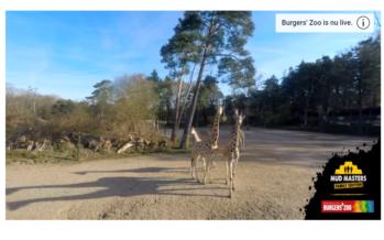 Rijnstate en Burgers' Zoo willen aardgasvrij worden