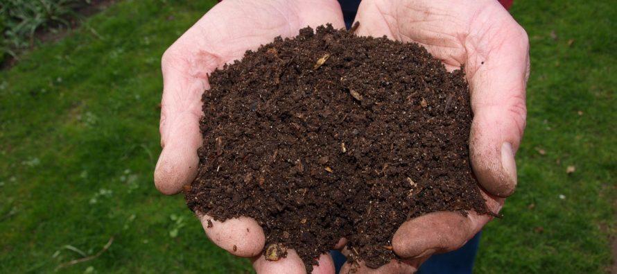 Vanaf vandaag gratis compost voor alle Arnhemmers
