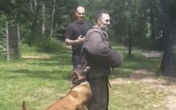 Hond bijt politieagent in arm en laat niet los