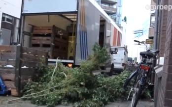 Ontdekking van 9 mega wietkwekerijen in centrum Arnhem verbaasd iedereen