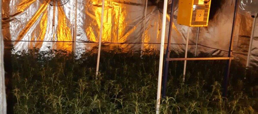 Spijkerkwartier blijft aantrekkelijk voor drugscriminelen in de stad